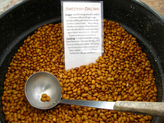 Swedish Brown Beans