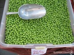 Shell Peas