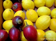Tree Tomato and Lemon