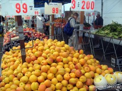 Cheap Apricots