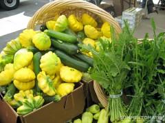 Squash and Dandelion Greens