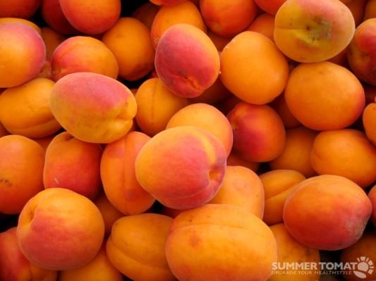 Red-Orange Apricots