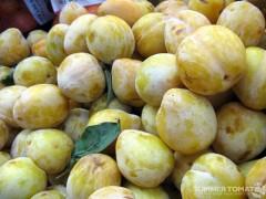 Mango Plums