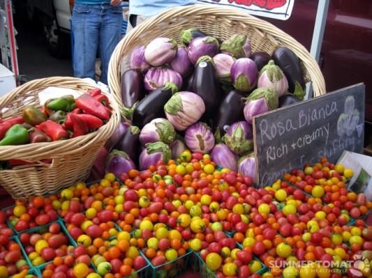 Fsa Organic Food Report