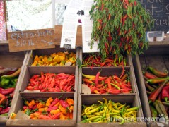 Extra Hot Peppers