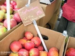 Spitzenburg Apples