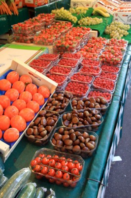 Persimmons, Chestnuts and Berries