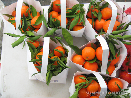 Olsen Organic Clementines