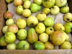 Malaysian White Guavas