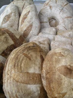 Fressen Bread