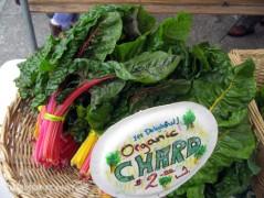 Organic Chard