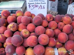 Organic Yellow Peaches