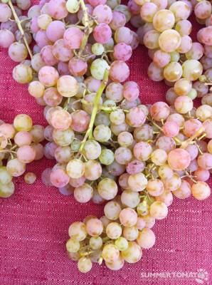 Lovely Grapes