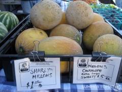 Sharlyn Melons