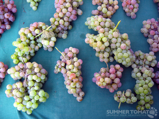 Bronx Grapes