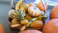 Autumn Harvest Decorative Baskets