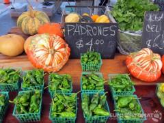 Pumpkins and Padrons