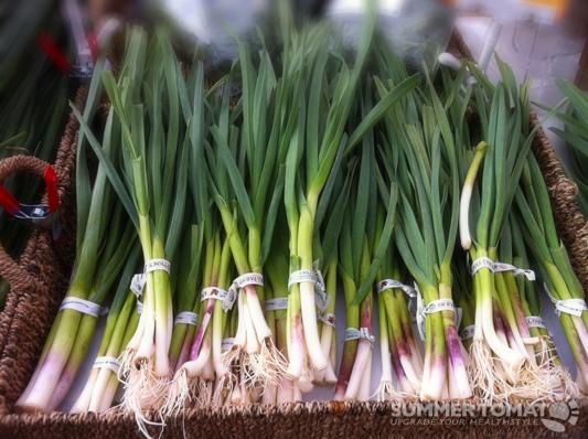 Green Garlic Bunches