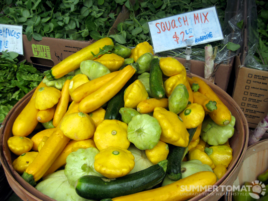Early Summer Squash