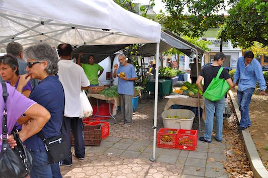 Cooperativa Organica Madre Tierra Market