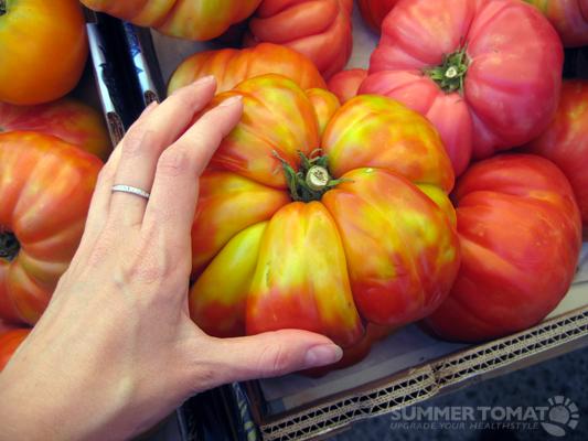 Gigantic Tomato