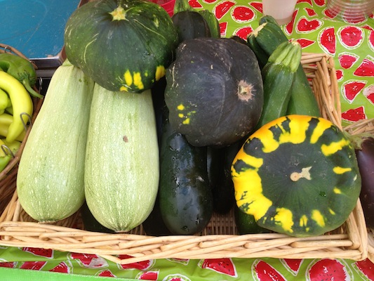 Larry's Summer Squash